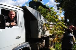 Самбірчани допомагають вантажити гіляки на  самоскид