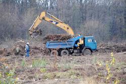 На Сихові готують ділянку, де будуватимуть тренувальну базу до Євробаскету-2015