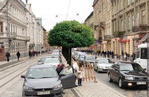 Щоб посадити дерева,  у Львові готові наново розкопувати  щойно відремонтовані вулиці