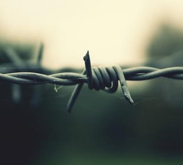 Від суми та від тюрми,  або як неповнолітні в'язні розвиваються за гратами