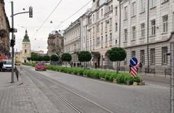 Активні львів'яни шукають спонсора, який дасть 200 тис грн на озеленення Городоцької