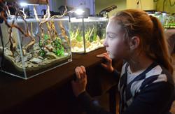У Львові  показали  підводний  світ у мініатюрі
