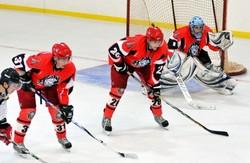Хокей. Стан «Левів» залишили шість гравців