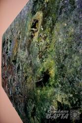 Виставка художника-пілігрима відкрилась у Львові (ФОТО)