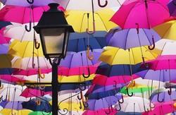 Завтра у Львові відбудеться флешмоб парасольок