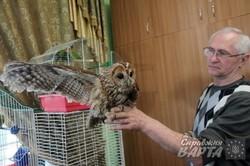 Львівський міський еколого-натуралістичний центр запрошує подивитись на птахів (ФОТО)