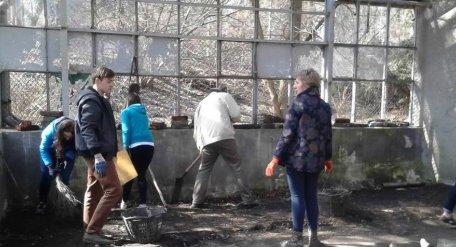 Активісти відновлюють оранжерею в Стрийському парку