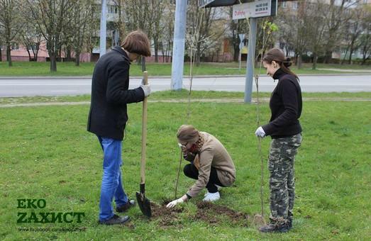 У Львові поети та письменники висадили дерева