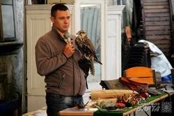 Львівські активісти-соколярі взялись захищати диких птахів (ФОТО)