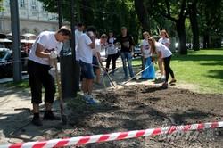 На алеї перед Оперним театром висаджують витоптану траву (ФОТО)