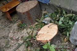 Попри протести скандальну готельну забудову на вул.Краківська-Вірменська розпочато (ФОТО)