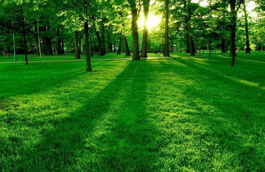 У Шевченківському районі Львова незабаром з`явиться новий парк