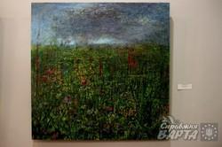 У Львові розпочалась виставка художника Дениса Струка (ФОТО)