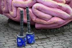 Як активісти у Львові вибивали з мізків совок (ФОТО)