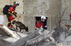 На Львівщині рятівники з усього світу вчилися ліквідовувати техногенну катастрофу (ФОТО)