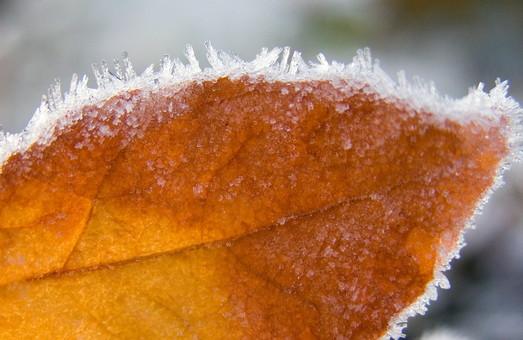 На Львівщину насувається холодна осінь