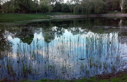 У Львові взялись чистити озера