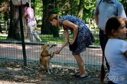 У Львові відбулась перша виставка безпородних собак (ФОТО)