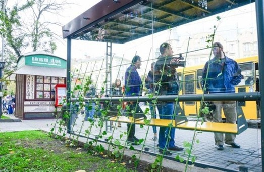 Першу еко-зупинку у Львові тихенько демонтували (ФОТО)