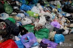 Попри обіцянки влади Львів продовжує потопати у смітті (ФОТО)