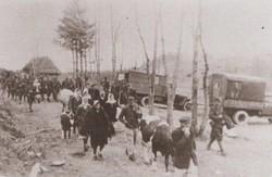 Жертвам операції «Вісла» встановлять пам'ятник у Рясному-1
