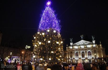 До Миколая у Львові встановлять головну ялинку