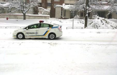У Львові дерево обірвало дроти мережі та пошкодило дві автівки
