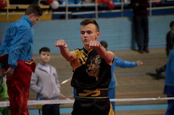 У Львові проходить фінал Кубка України з ушу 2016 (ФОТО)