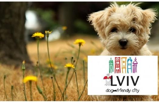 Встигнути до Нового року: у Львові з 01.01. штрафуватимуть власників незареєстрованих собак