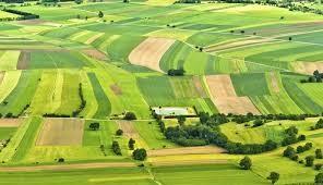 Власники земельних ділянок на Львівщині отримали 250, 4 мільйони від їх оренди
