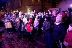 Як у Львові зустрічали Китайський Новий рік (ФОТО)