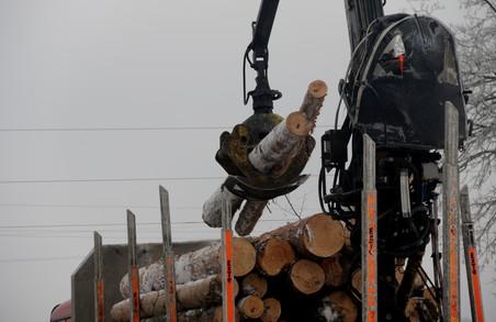 На Львівщині запрацювала нова лісопильна лінія (ФОТО)