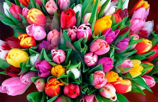 Двоє юнаків у Львові дарували своїм коханим крадені тюльпани та троянди