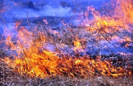 Упродовж доби рятувальники на Львівщині ліквідували 35 пожеж сухостою