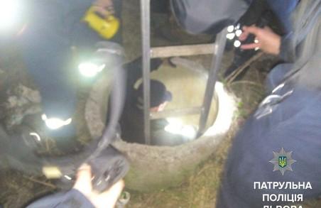 Колектор, у який посеред Львова впала собака, обгородили