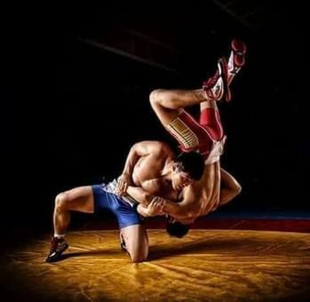На Львівщині проходить міжнародний турнір з вільної боротьби