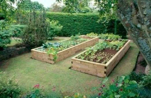 У Львові розвиватимуть пермакультуру урбан-садів