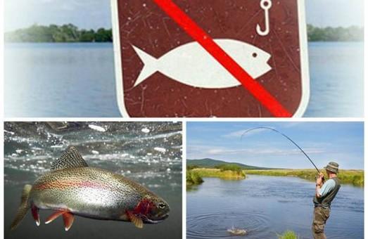 На Львівщині вступає в силу заборона на ловлю риби та раків