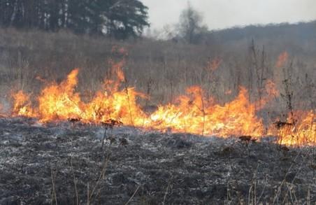Мешканців Львівщини знову просять припинити палити траву
