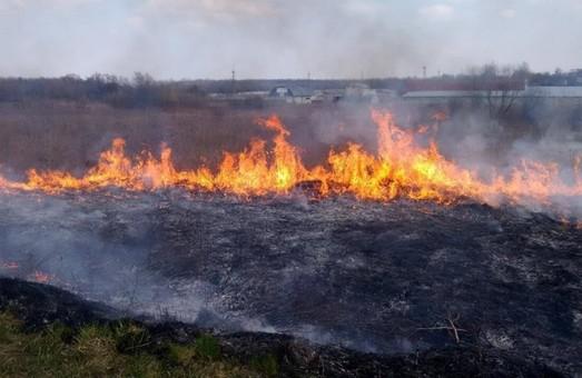На Перемишлянщині через спалювання трави постраждало два господарства