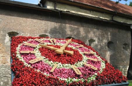 Віоли прикрасили квітковий годинник Львова