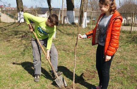 Школярі Дрогобиччини долучились до заходів із нагоди Дня Довкілля