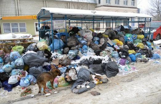 Львів'яни продовжують накопичувати сміття
