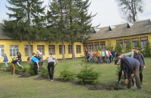Як молодь на Львівщині розпорядилась лопатами
