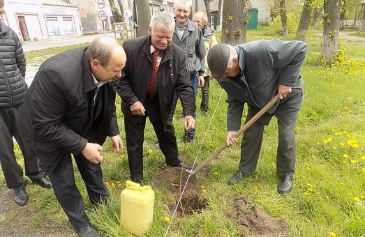 На Львівщині в роковини аварії на ЧАЕС висадили липову алею пам'яті