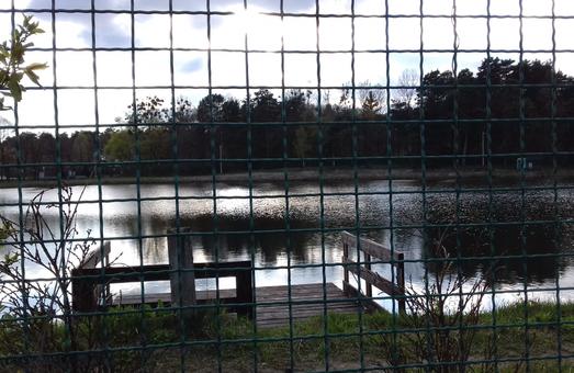 У Львові вимагають облаштувати рекреаційну зону навколо Брюховицьких озер