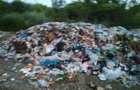 Сміття Садового знайшли у Миколаївському районі