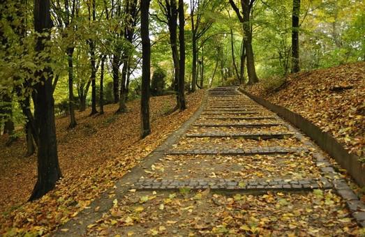 Андрій Шульський відповідатиме за інвестиційні проекти львівських парків