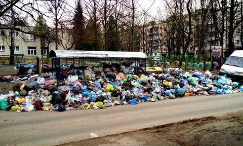 У сміттєвих майданчиках Львова виявили предмети, схожі на гранати