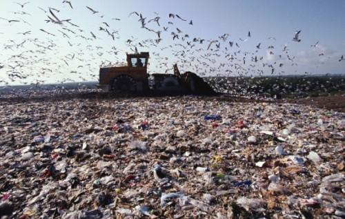 Грибовицьке сміттєзвалище варто закрити на 10 років?